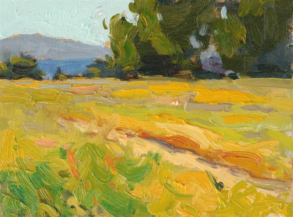 """Summer Field"" original fine art by Michael Clark"