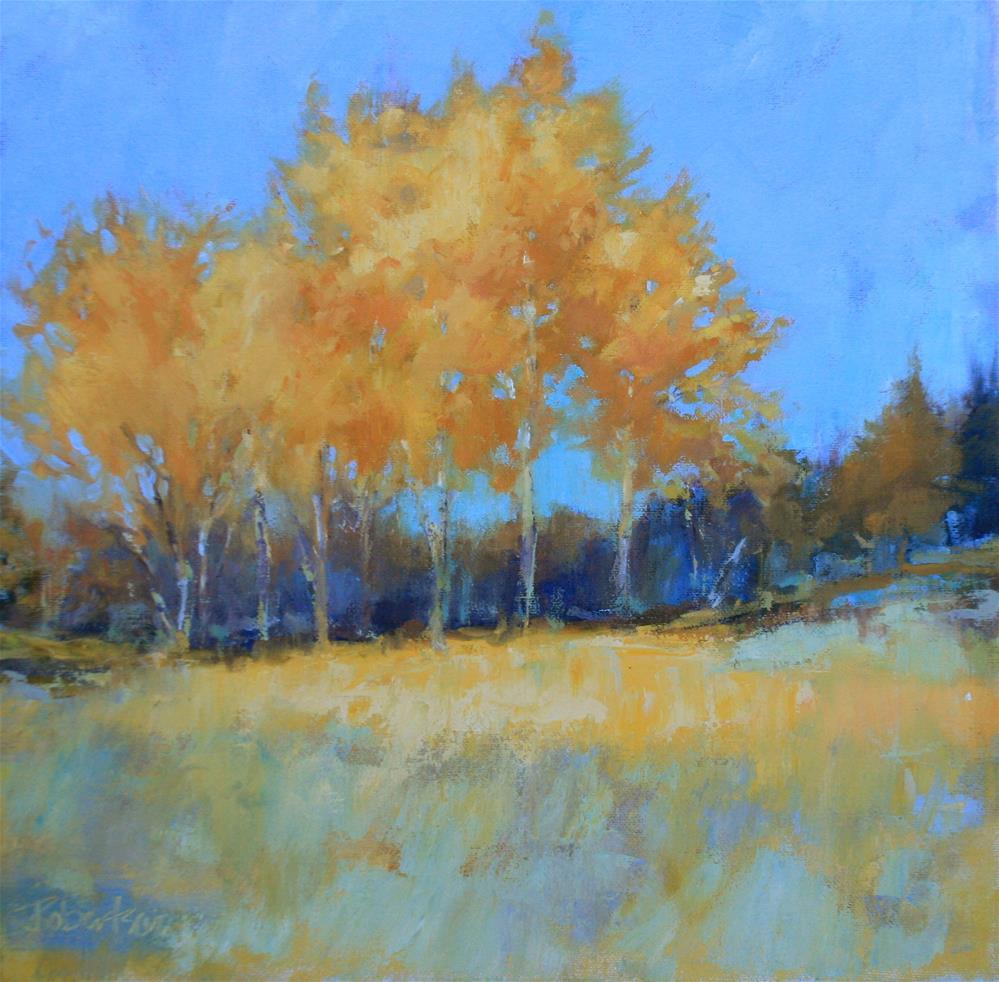 """""""Autumn Birch Stand"""" original fine art by Jane Robertson"""