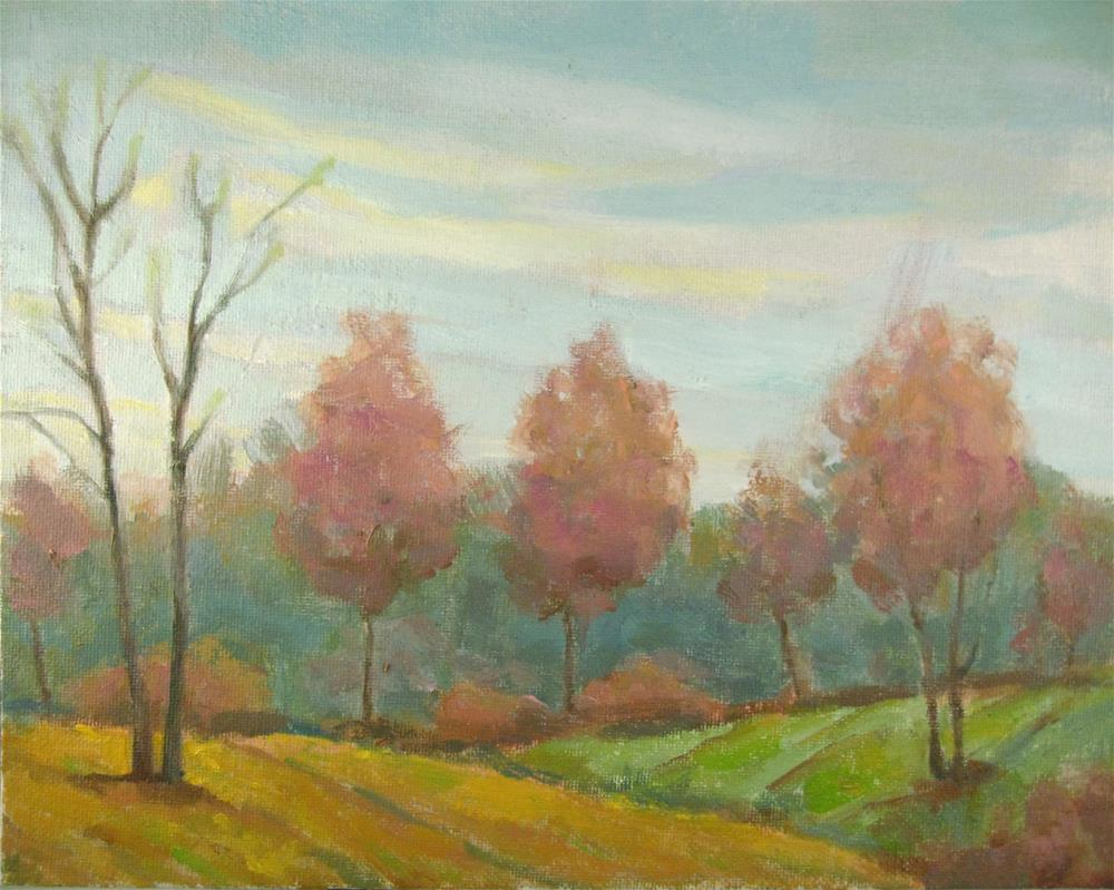 """Rolling Fields at Walnut Woods"" original fine art by Robie Benve"