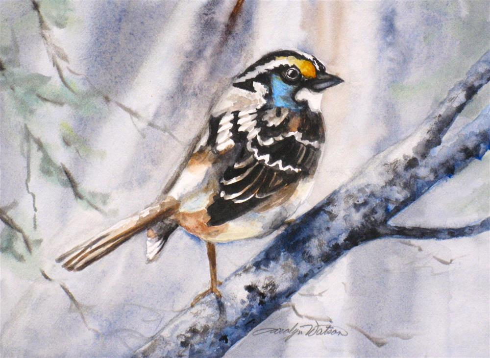 """Winter Bird"" original fine art by carolyn watson"
