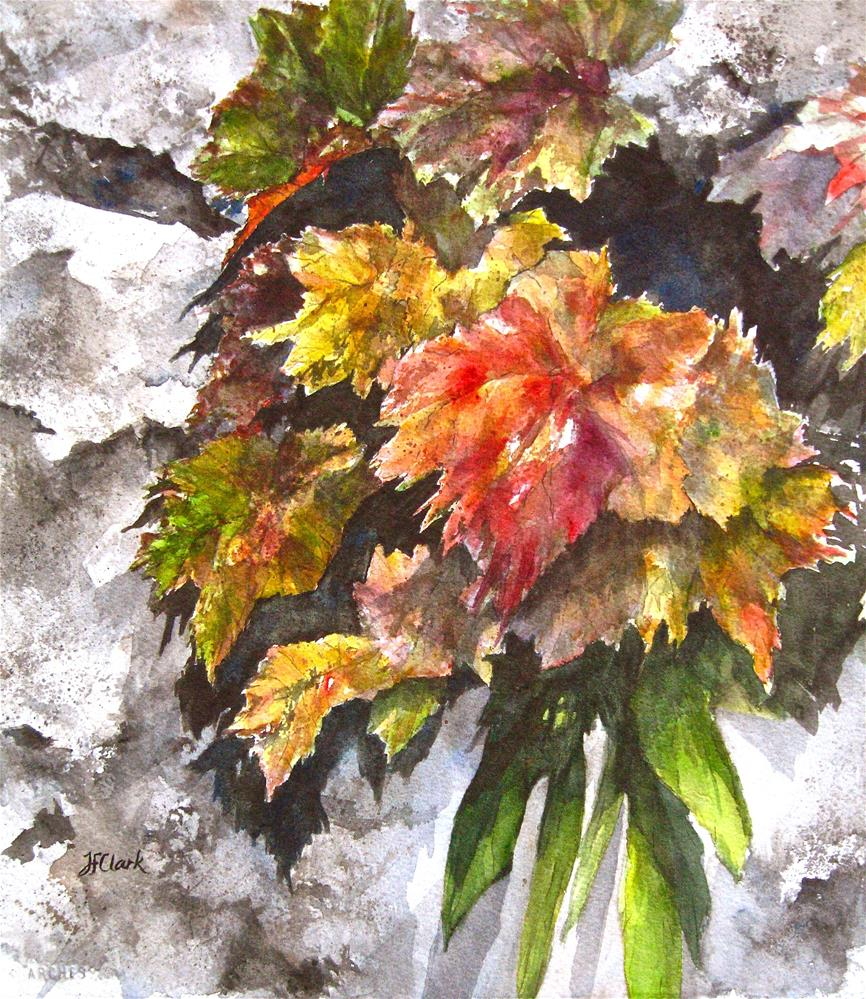 """Rock Wall Shadows"" original fine art by Judith Freeman Clark"