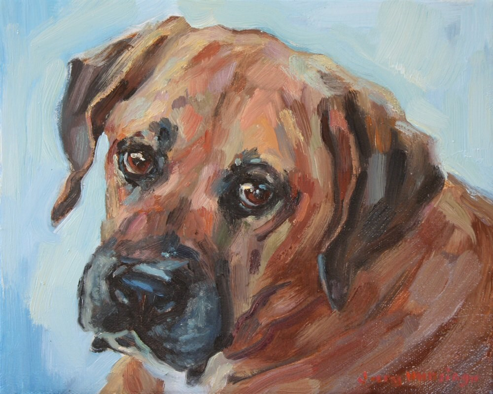 """Boxer Mix"" original fine art by jerry hunsinger"