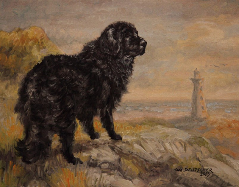 """Newfoundland"" original fine art by Sue Deutscher"