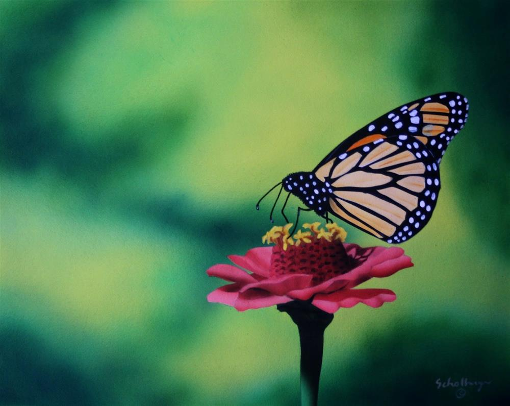 """Pink Zinnia with Butterfly"" original fine art by Fred Schollmeyer"
