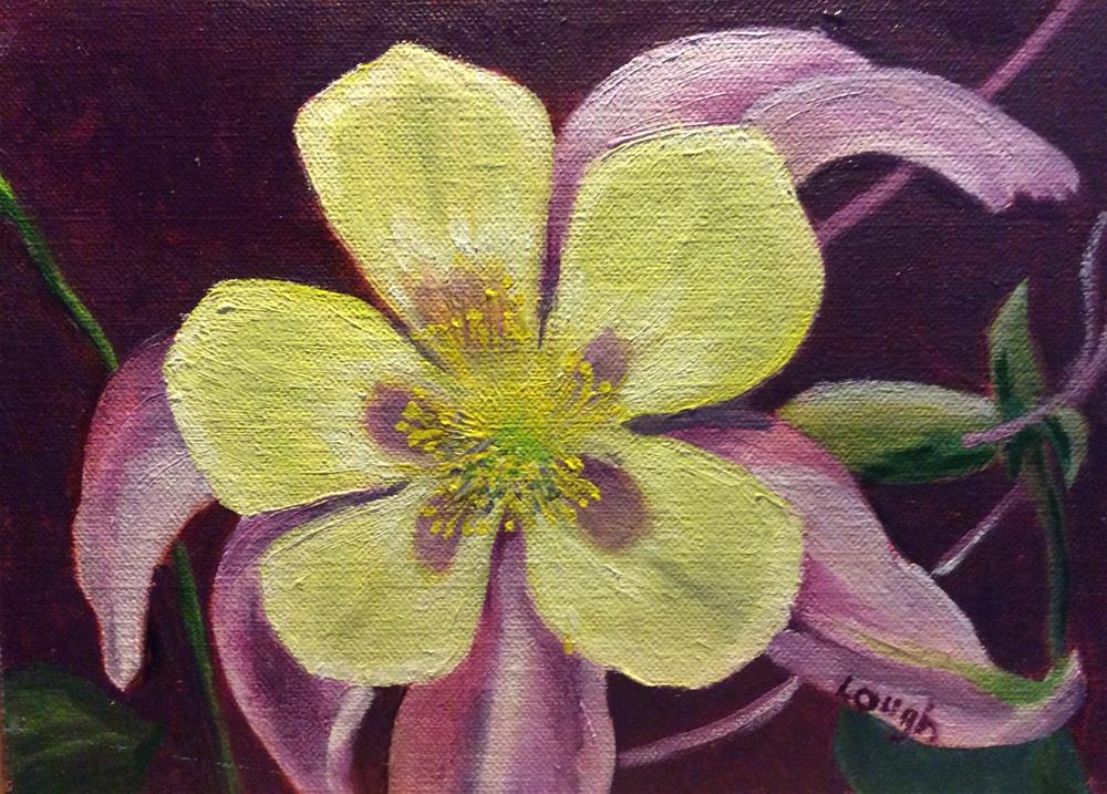 """Fancy Columbine"" original fine art by Charlotte Lough"