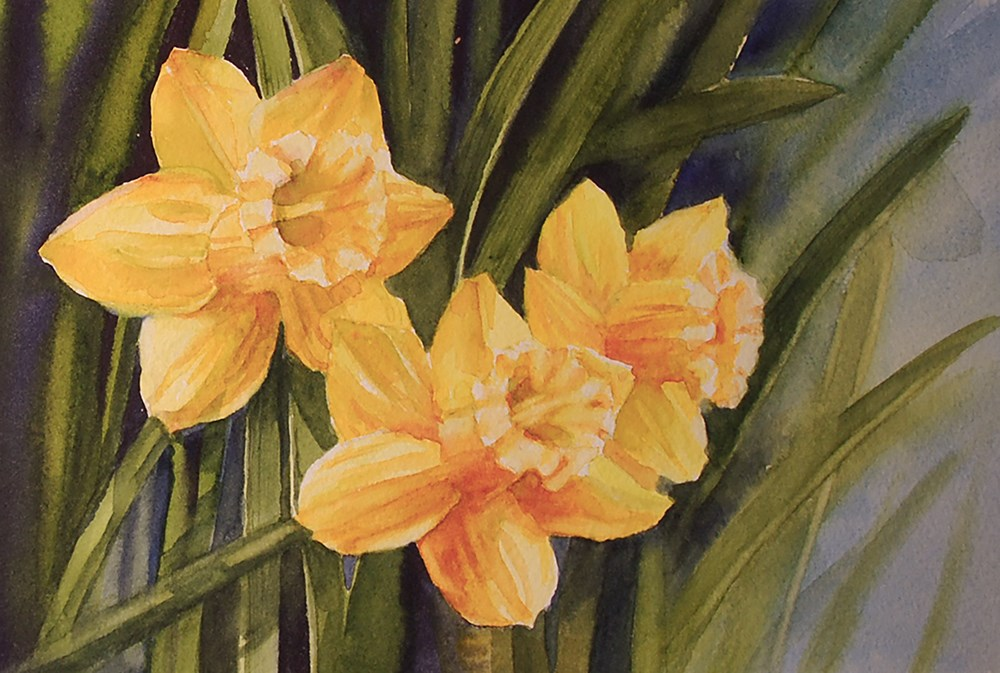 """Three Daffodils"" original fine art by Mary Anderson"