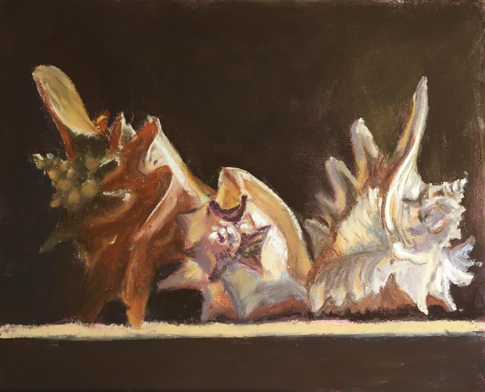 """Shells collection 1"" original fine art by Natasha Ramras"