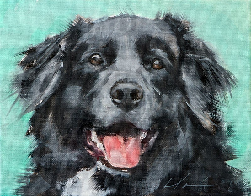 """PAINT MY DOG - Cleo"" original fine art by Clair Hartmann"