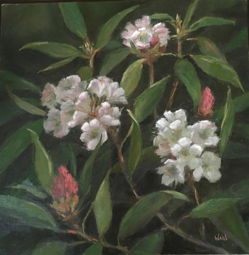 """Spring Rhodedendron"" original fine art by Nancy Wahl"