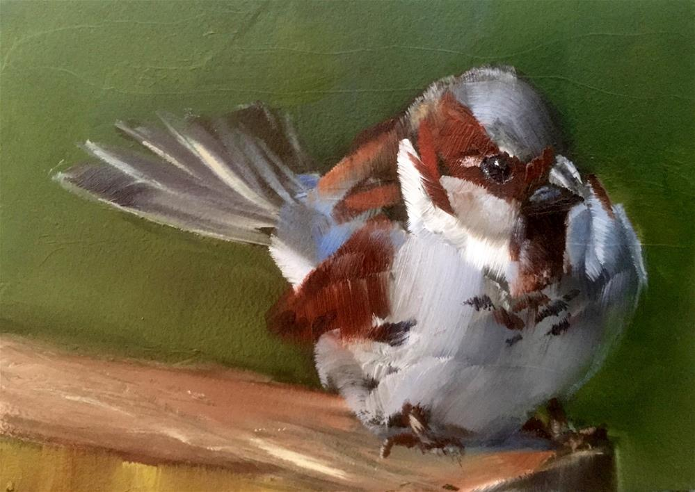 """English House Sparrow"" original fine art by Gary Bruton"