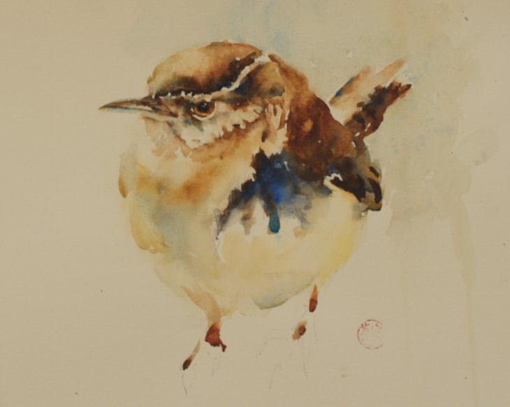 """Grumpy Wren"" original fine art by Sue Churchgrant"