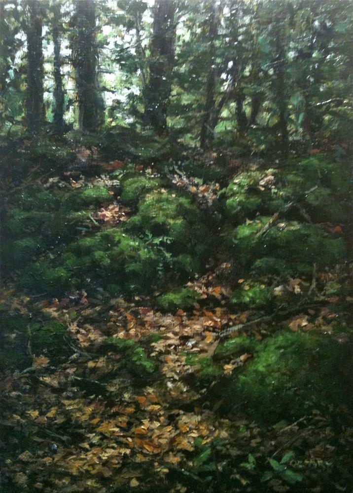 """""""LP 10 Sunlight on Mossy Rocks"""" original fine art by Danny O'Leary"""