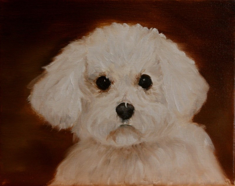 """Zoey"" original fine art by Mary Datum"