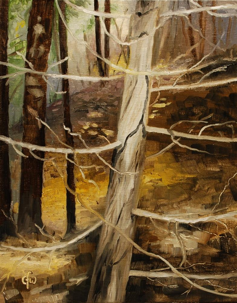 """Cedar Branches"" original fine art by Gary Westlake"