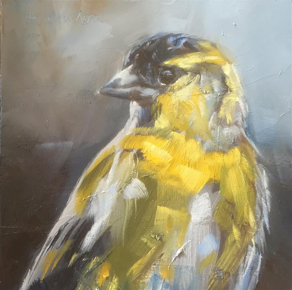 """Siskin Portrait"" original fine art by Gary Bruton"