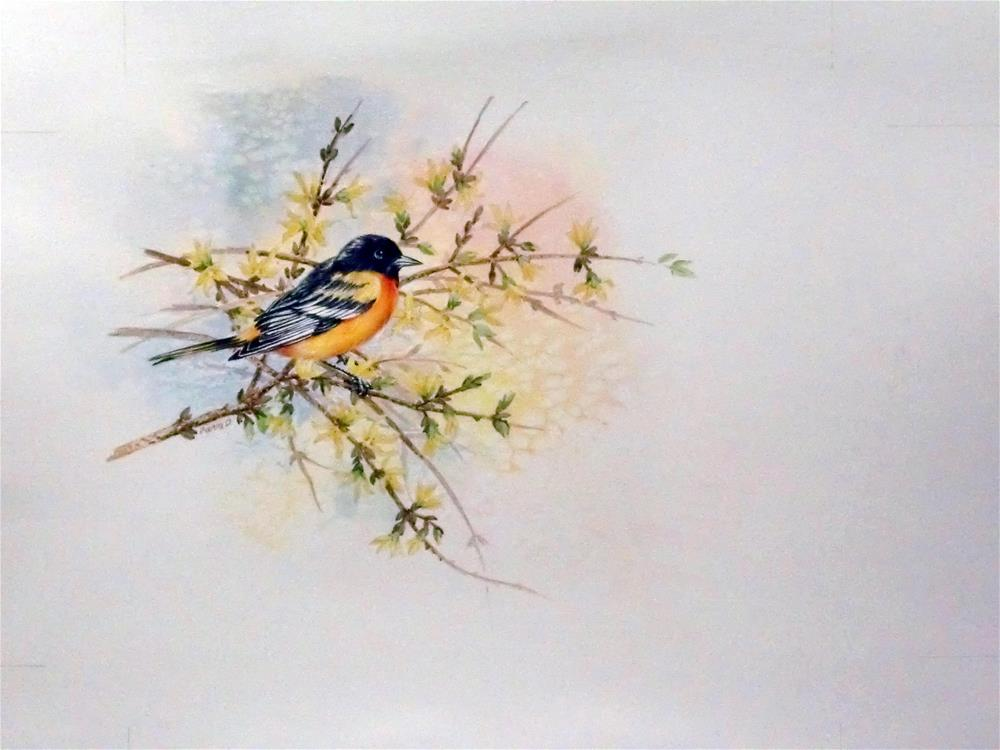 """Baltimore Oriole"" original fine art by Jean Pierre DeBernay"