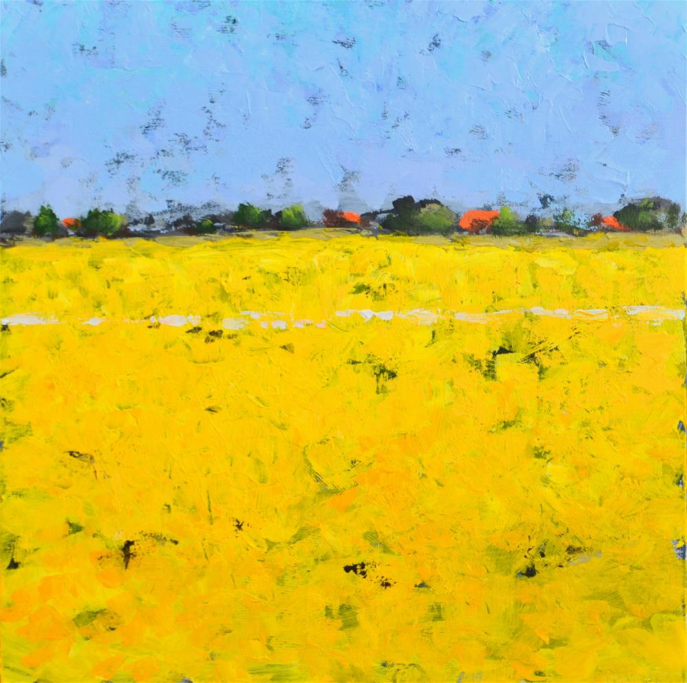 """Coleseedfields in the polder"" original fine art by Wim Van De Wege"