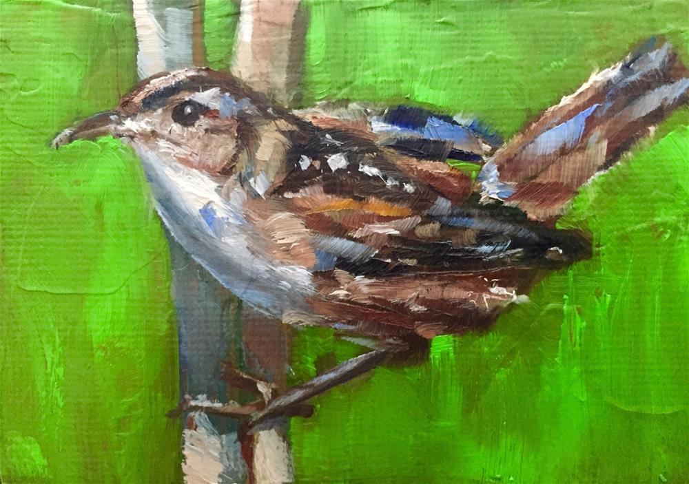 """Marsh Wren"" original fine art by Gary Bruton"