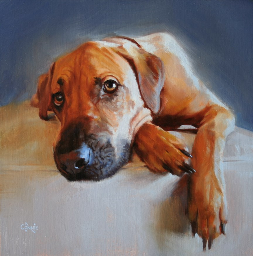 """Marshall"" original fine art by Connie Nobbe"