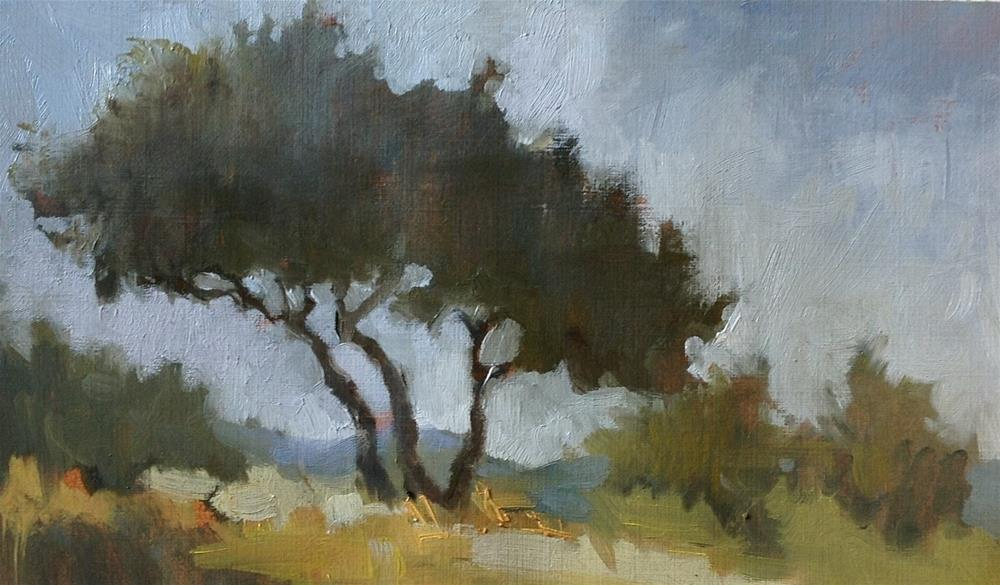 """Olive trees study"" original fine art by Christine Bayle"