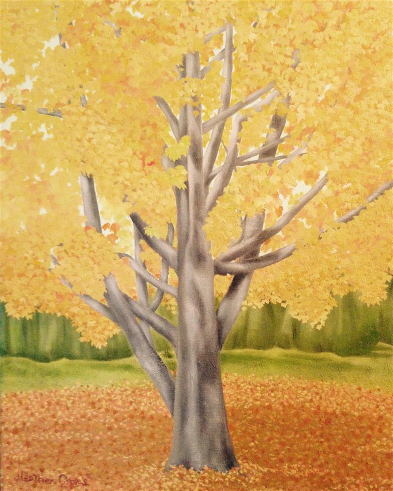 """Golden Maple III"" original fine art by J H Graves"