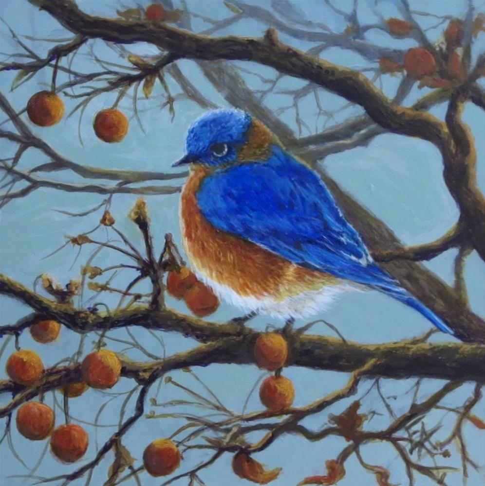 """Eastern Male Bluebird"" original fine art by Elizabeth Elgin"