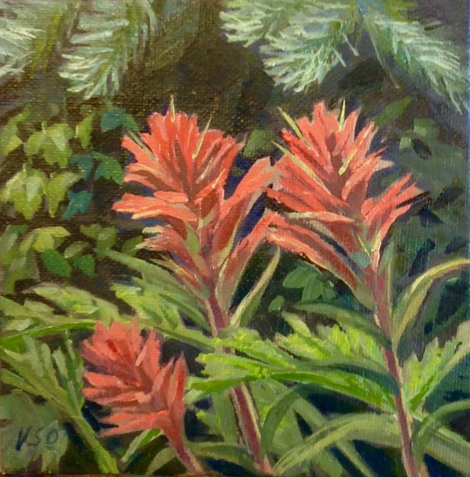 """Indian paintbrush II"" original fine art by Valerie Orlemann"
