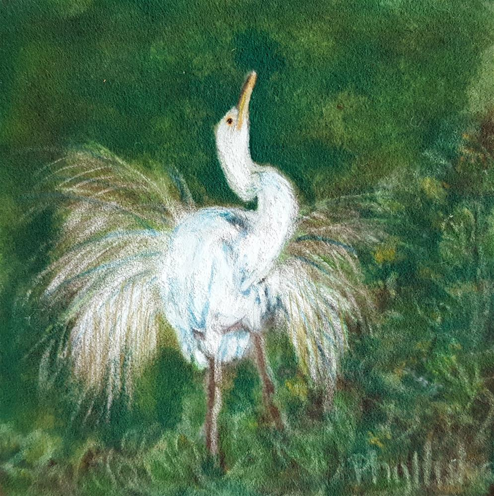 """Great Egret"" original fine art by Phyllisha Hamrick"