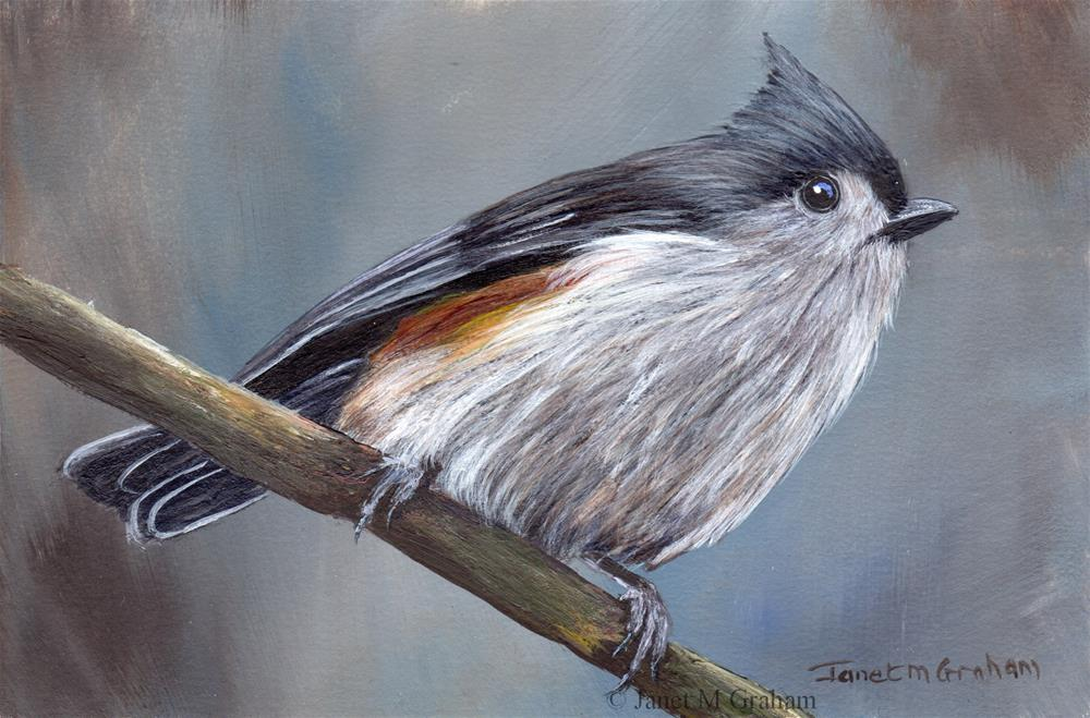 """Tufted Titmouse No 10"" original fine art by Janet Graham"
