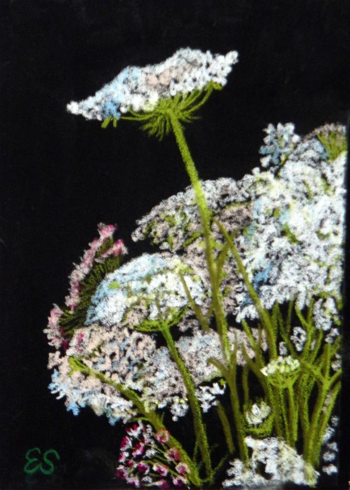 """Bouquet of Queen Anne's Lace"" original fine art by Elaine Shortall"