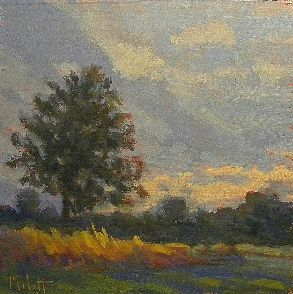 """Sunrise First Light of Morning Landscape Heidi Malott"" original fine art by Heidi Malott"