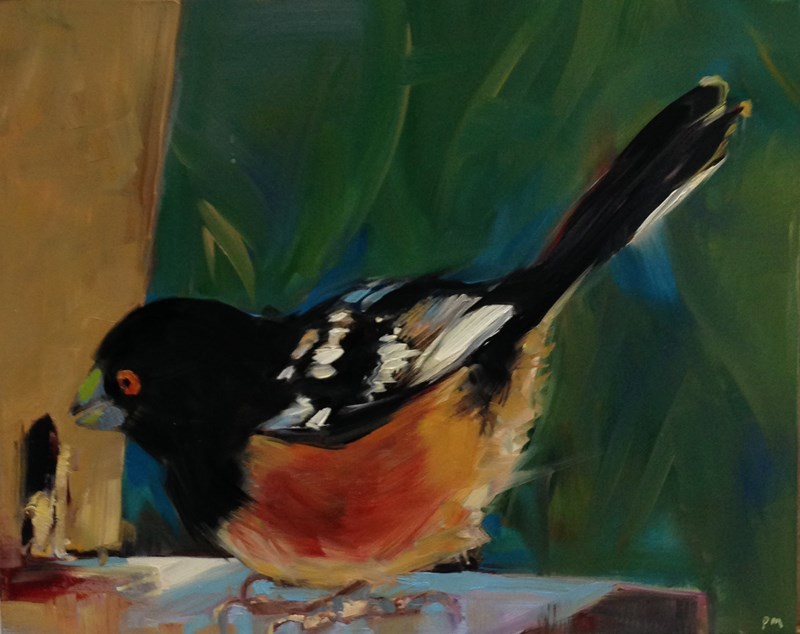 """T is for Towhee"" original fine art by Patti McNutt"