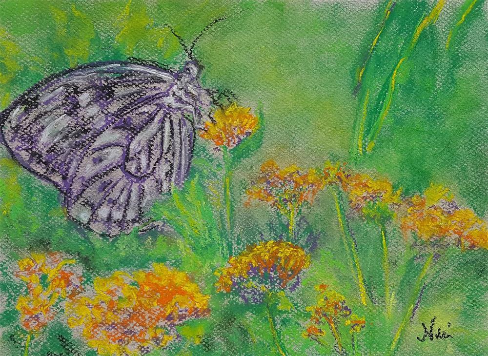 """Spring Butterfly"" original fine art by Niki Hilsabeck"