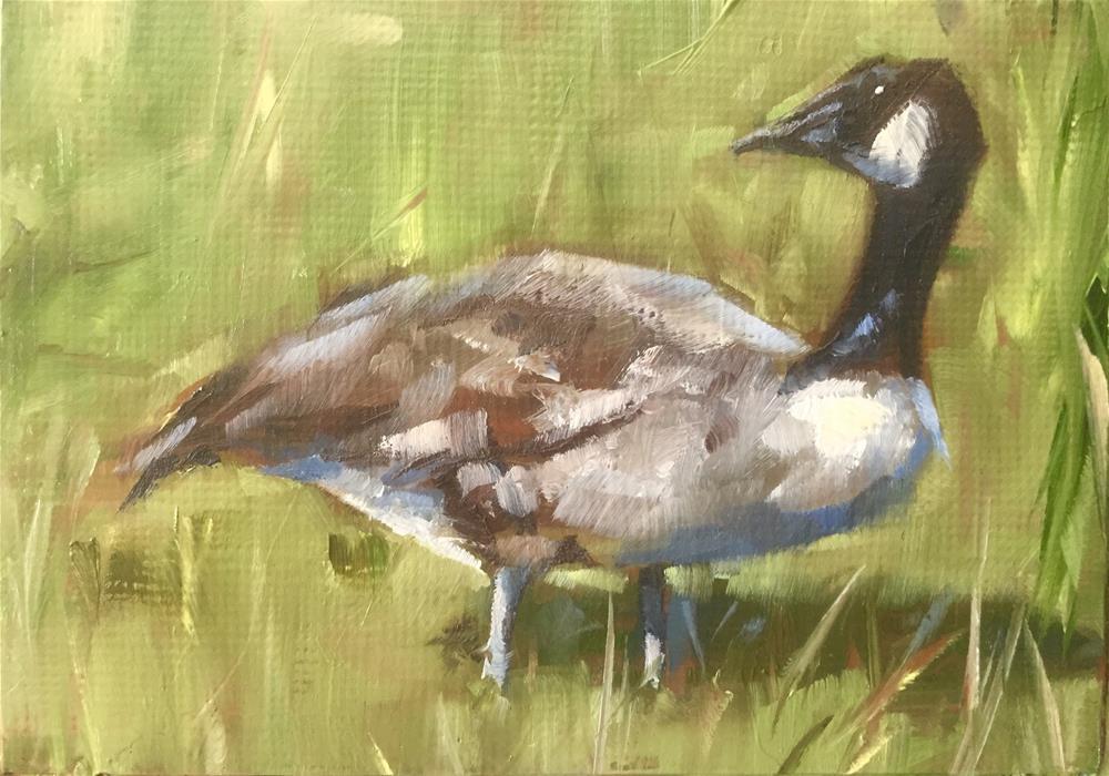 """""""Canada Goose"""" original fine art by Gary Bruton"""