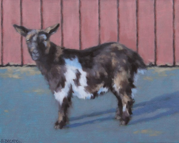 """Tri-Colored Goat"" original fine art by Sarah Becktel"