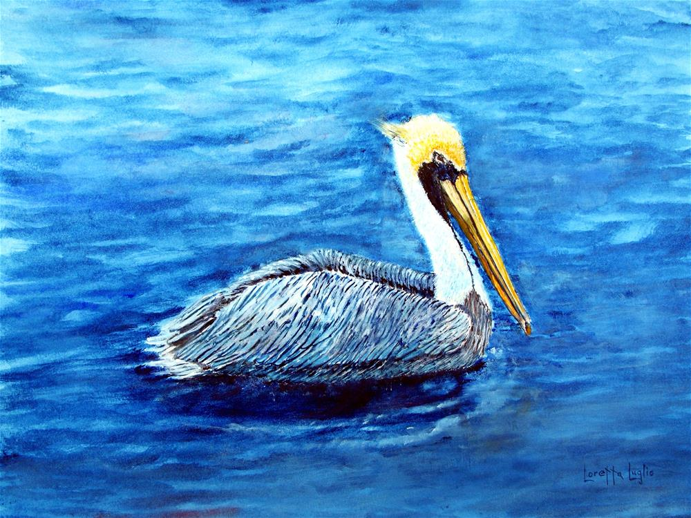 """""""Pelican"""" original fine art by Loretta Luglio"""