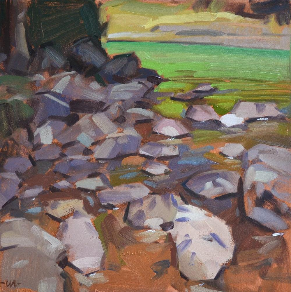 """Dappled Rocks"" original fine art by Carol Marine"