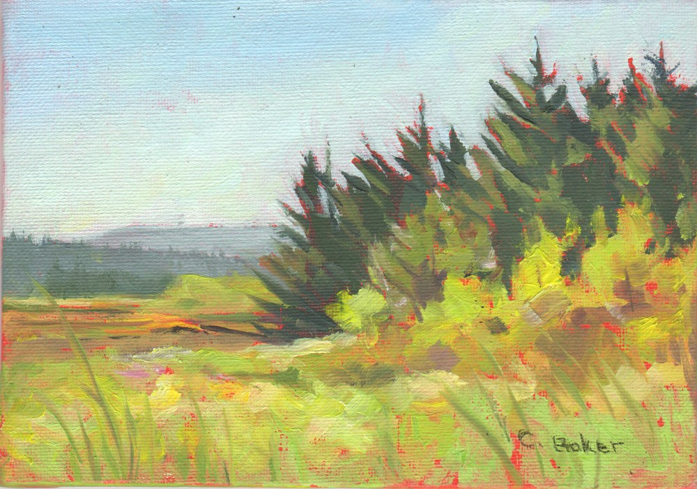 """Aimee's View"" original fine art by Carole Baker"