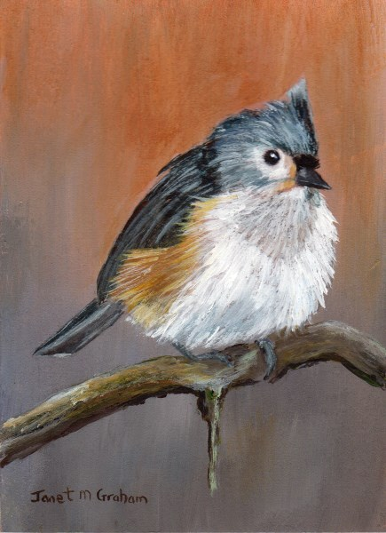 """Tufted Titmouse ACEO"" original fine art by Janet Graham"
