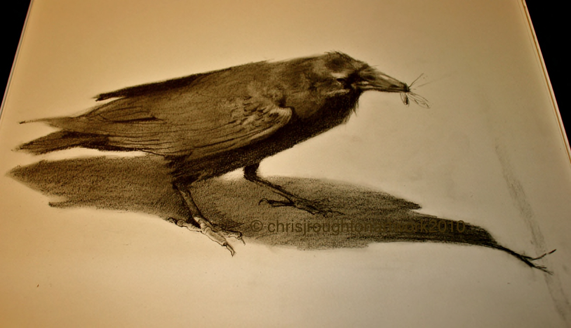 """Ravens of Bryce Canyon #2"" original fine art by C J Roughton"