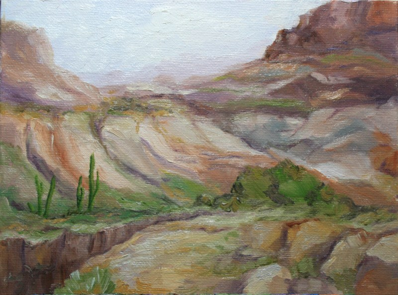 """High Desert Canyon"" original fine art by Jean Nelson"