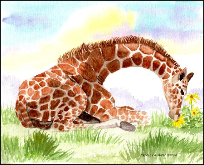 """The Curious Giraffe Calf"" original fine art by Patricia Ann Rizzo"