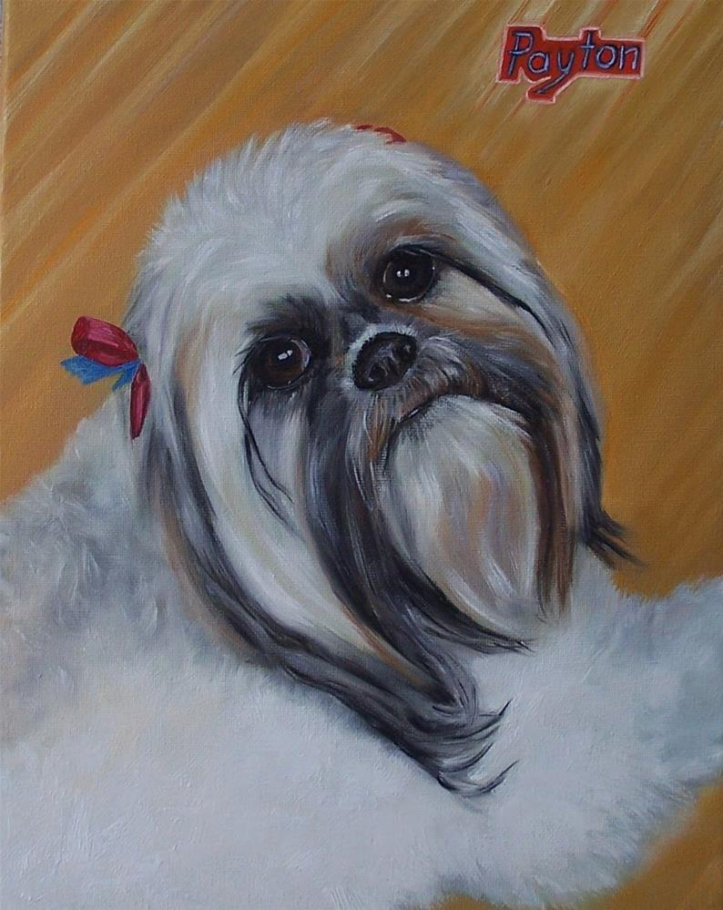 """Payton"" original fine art by Donna Munsch"
