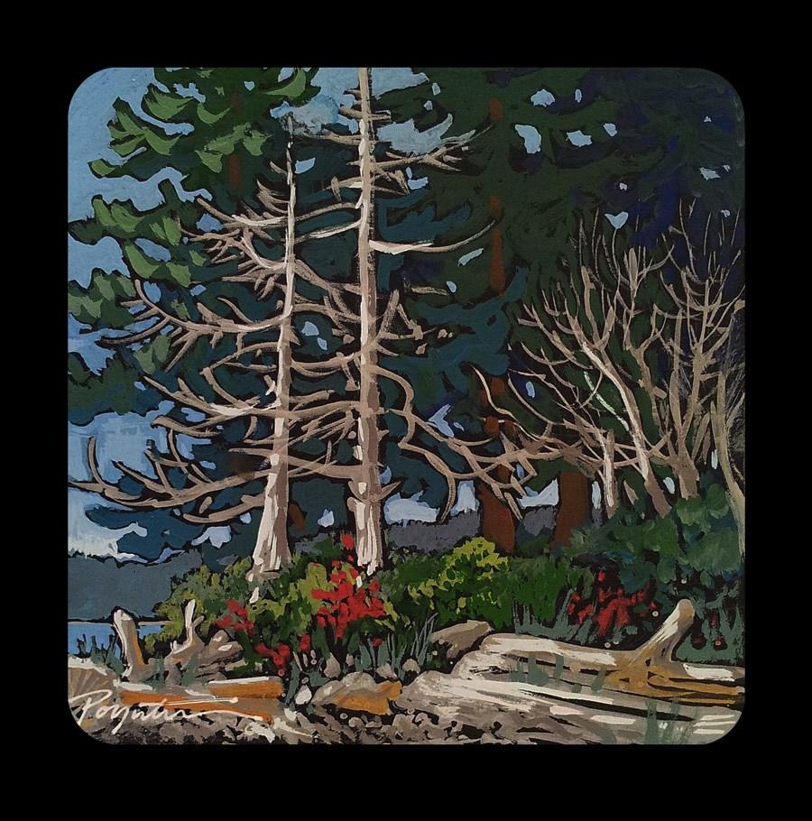 """3.25 Forest Bones #1"" original fine art by Jan Poynter"
