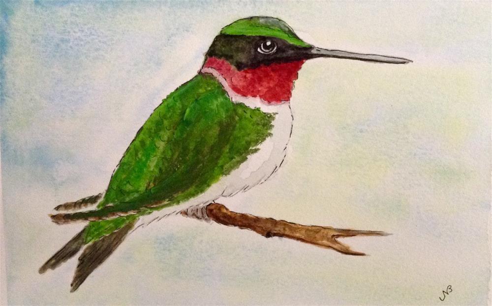 """Hummer watercolor / ink  9 x 6"" original fine art by Nancy Beard"