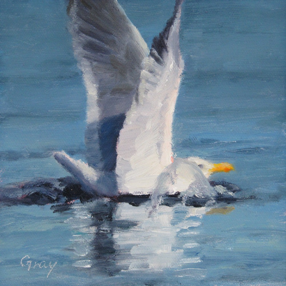 """Dipping Gull"" original fine art by Naomi Gray"
