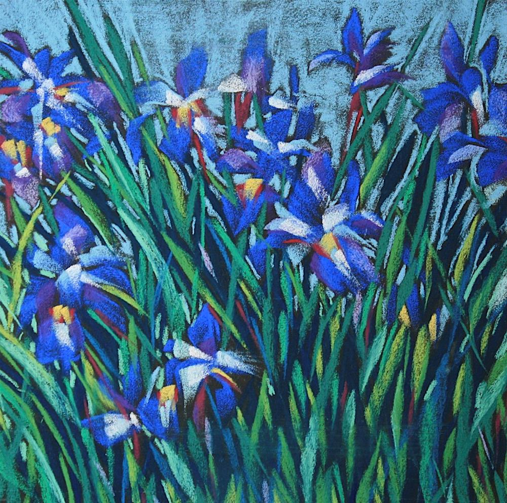 """Iris Garden"" original fine art by Mary Anne Cary"