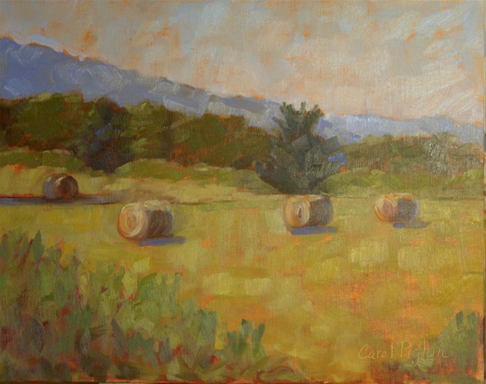 """Hay Bales I"" original fine art by Carol Pighin"