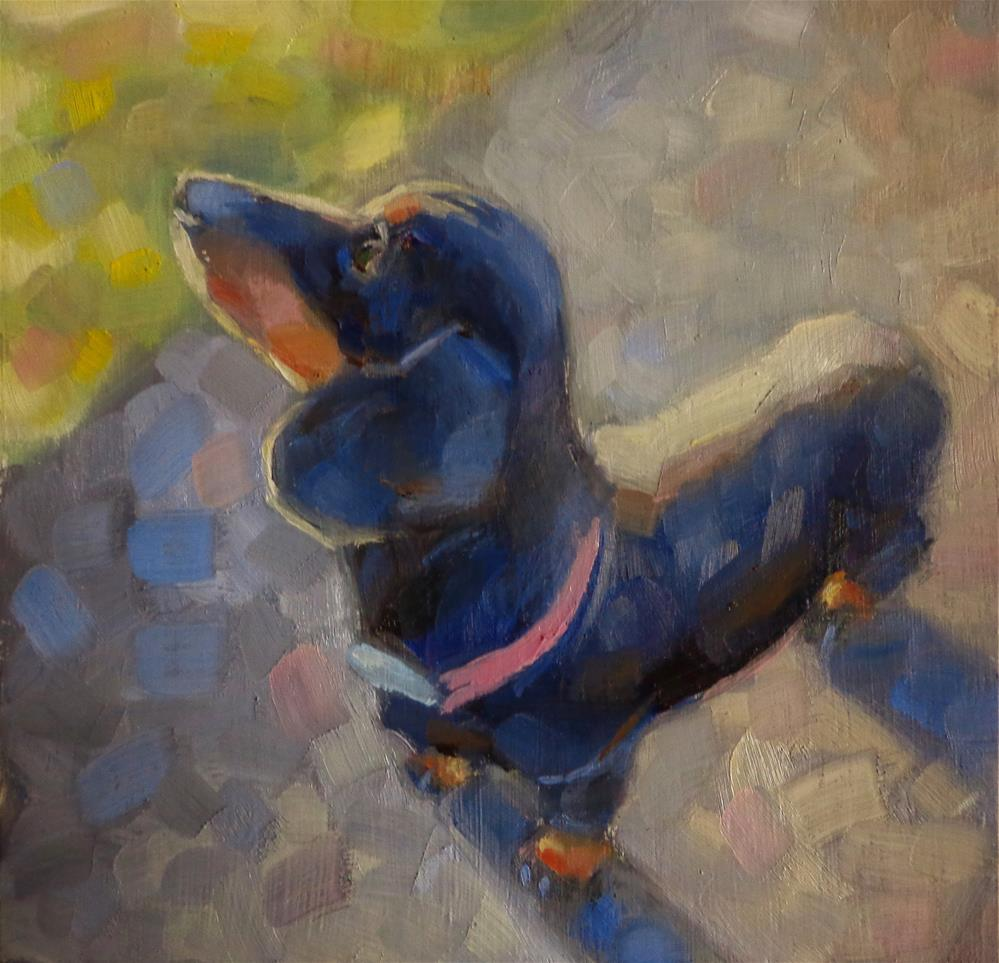 """Dachshund"" original fine art by Maria Z."