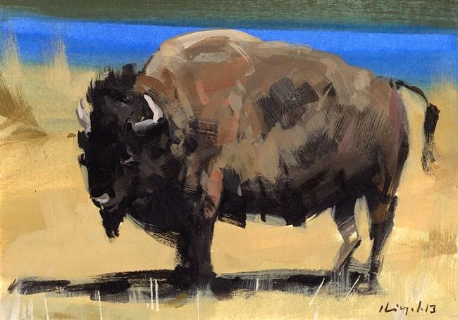 """Buffalo - Quick Study"" original fine art by David Lloyd"